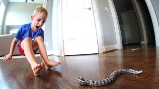 Dad Scares Son WITH A SNAKE!