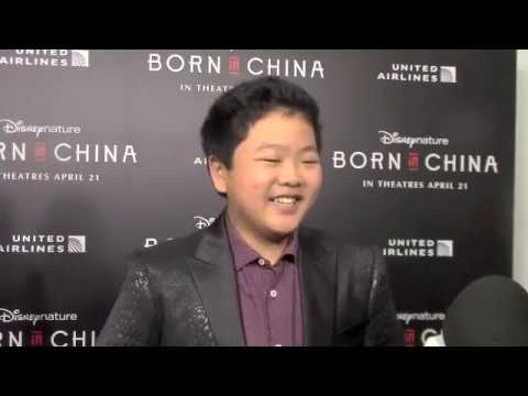 Hudson Yang at the Born in China Premiere