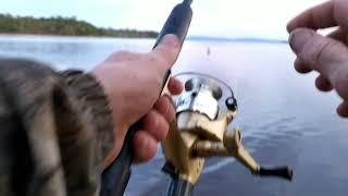Рыбалка осенью в диком месте