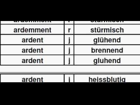 TFG01AI Dictionnaire Français Allemand, Französisch Deutsch Wörterbuch