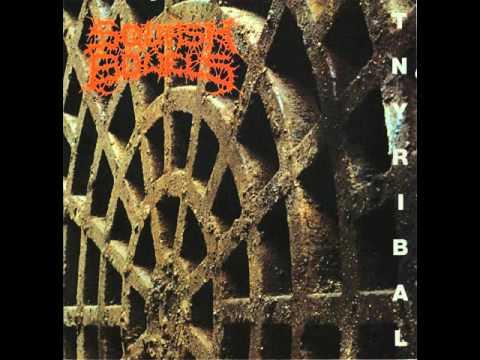 SQUASH BOWELS (poland) ´´tnyribal´´ (CD 1999)