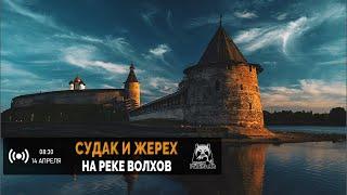 Русская Рыбалка 4 Стрим Судак и Жерех на реке Волхов