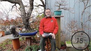William Valavanis: Japanese Maple Bonsai techniques