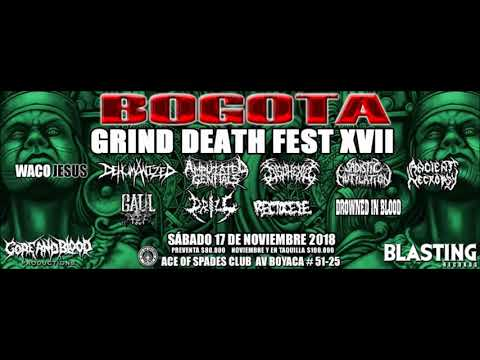 Daniel Paz - Bogotá Grind Death Fest XVII - Entrevista Bunka Radio