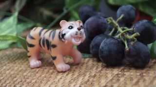 Хитрый тигр и коала. Мультик для детей. Видео игрушки(Коала забралась высоко на дерево, а хитрый тигр хочет чтоб коала слезла с дерева к нему и потом он съест..., 2015-09-29T18:49:37.000Z)