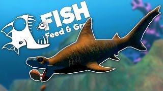 Deadly Hammerhead Shark and Invisible Fish! - Huge Swamp Update - Feed and Grow: Fish Gameplay