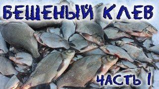 рыбалка на леща смотреть видео