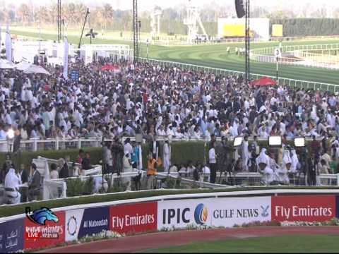 DUBAI RACING 12015 3 28 12 33 58