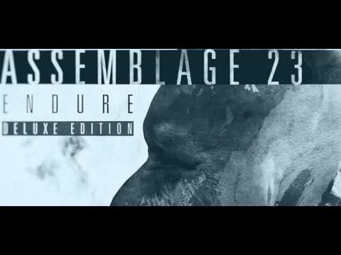 Assemblage 23 - Endure
