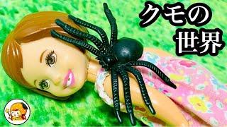 クモ幽霊【怖い話】夢の中に閉じ込められる!? ケーちゃんの前に蜘蛛が現れる意味は…