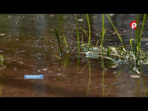 Ситуация с прорывом скважины в Белозерске