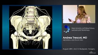 PainCast Preview: Abdominal and Pelvic Pain: Dr. Andrea Trescot, MD, FIPP, CIPS