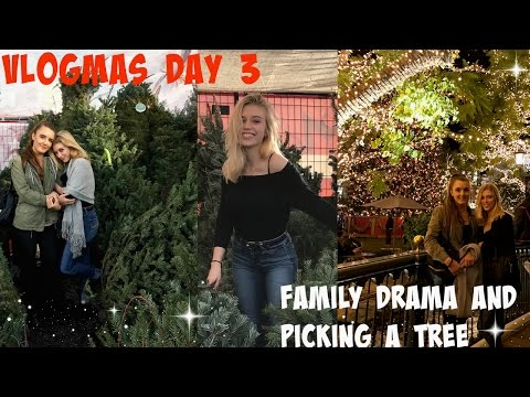 GOING TO THE LOS ANGELES GROVE AND A CHRISTMAS TREE!