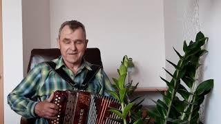 Vijolnieks-Скрипач
