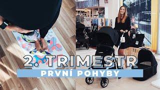 2. TRIMESTR - první pohyby, pohlaví miminka a výběr prvních věcí