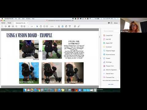 Dog Show Grooming Seminar from Leading Edge Dog Show Academy sponsored by Groomers Pro