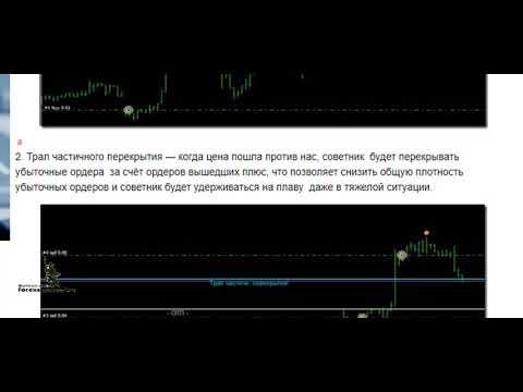 Forex Setka Trader — финал Улучшенный алгоритм и высокая надёжность