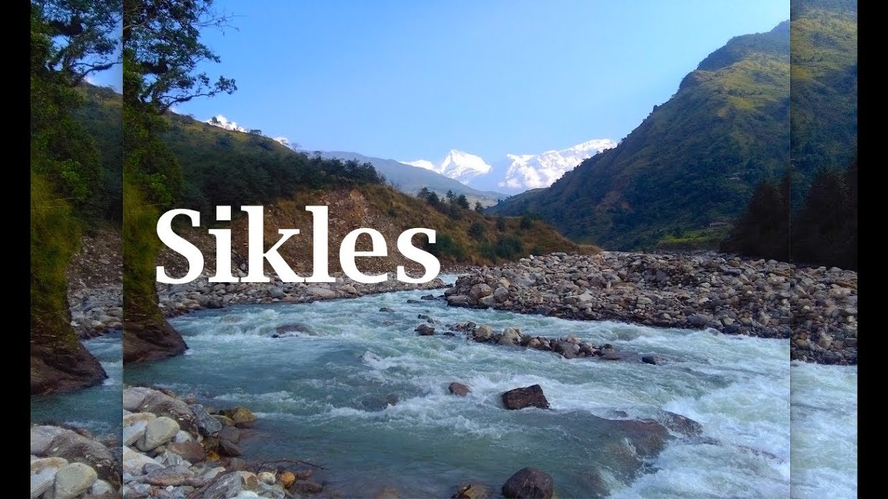 Sikles Trek | Short & easy trekking from Pokhara Nepal