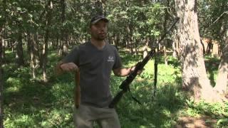 Bone Collector Squirrel Hunt with Gamo Bull Whisper BC edition