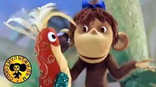 Зарядка для хвоста (38 попугаев) | Советские поучительные мультфильмы для детей