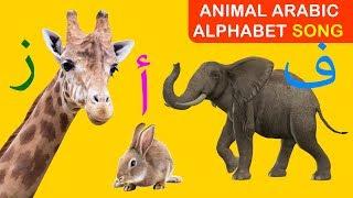 Arabic alphabet song (animals) - (أغنية الحروف الأبجدية العربية (الحيوانات