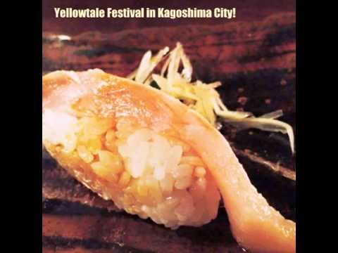 YELLOWTALE Festivals By Kagoshima University Fishery Faculty Students, JAPAN