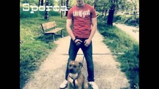 Coscienza Sporca - Bull Terrier ( clan de roma)