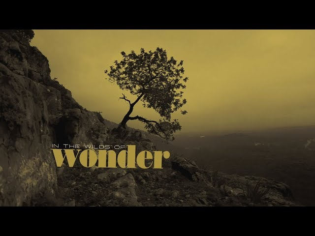 Sonny Landreth - The Wilds Of Wonder (Official Lyric Video)