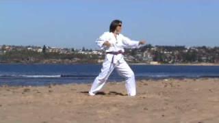 WTF taekwondo patterns taegeuk sam jang (taegeuk 3)