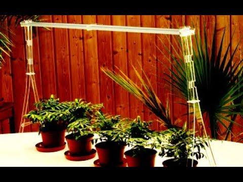 Купить искусственные растения для интерьера недорого в интернет магазине оби. Выгодные цены. Доставка по москве, санкт-петербургу и россии.