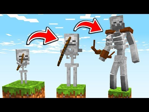LIFE OF A MINECRAFT SKELETON!!