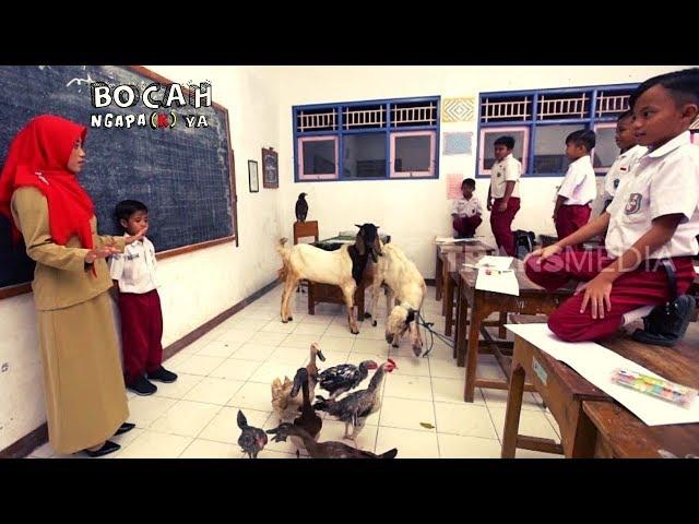[FULL] BOCAH NGAPA(K) YA (13/07/19)