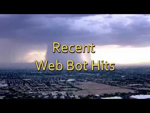 Web Bot Hits #1