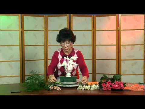 Cam Hoa - Valentine