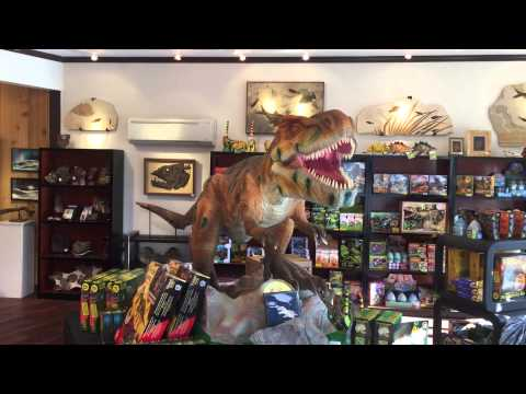 Prehistoric Store Tour, Lincoln City, Oregon