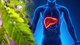 New Improved Liver Formula- why your liver is SO important