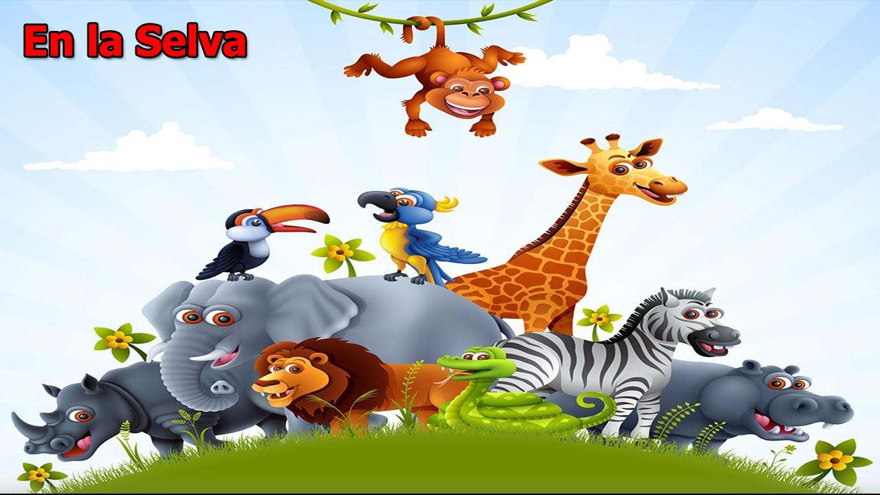 Chistes de animales En la Selva Si te ries pierdes Full  HD