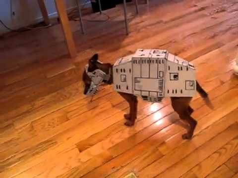 Homemade star wars at at dog costume my disguises we love costumes