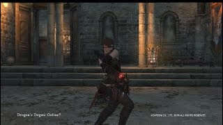Dragons Dogma Online - All vocations/Classes in action