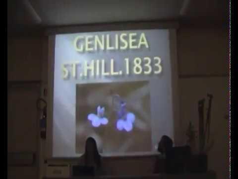 Rita Corino - Il genere Genlisea