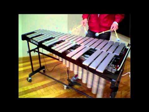 Vibraphone Techniques