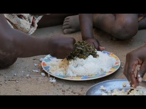 WFP warns displaced Mozambicans risk facing food crisis, calls for help