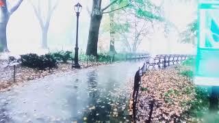 ភ្លៀងtv/mưa/rain