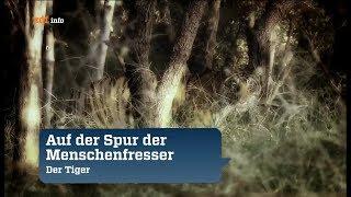 Doku 2017 NEU Auf der Spur nach Kannibalen   reportage 2017 in HD