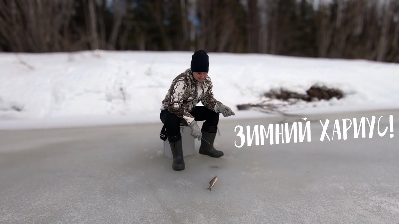 Отличная зимняя РЫБАЛКА НА ХАРИУСА / Алёна поймала ТРОФЕЙ
