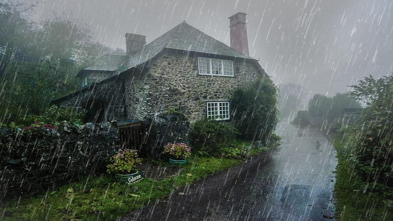 Maravilloso Sonido de Lluvia para Dormir y Relajarse en 15 Minutos - Lluvia en el bosque brumoso