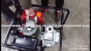 видео Мотопомпы дизельные