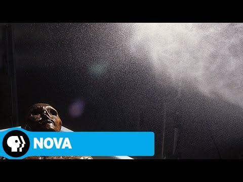 NOVA | Iceman Reborn (Preview) | PBS