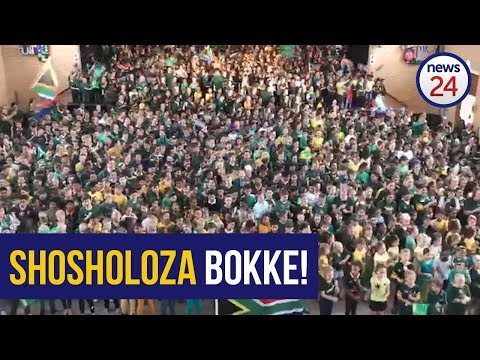 WATCH | Edgemead Primary Schoolkids Sing Their Hearts Out For The Boks