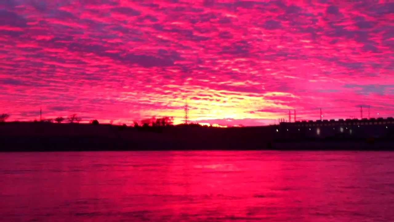 Beautiful Sunset Sundown with a very rare pink color. This ...